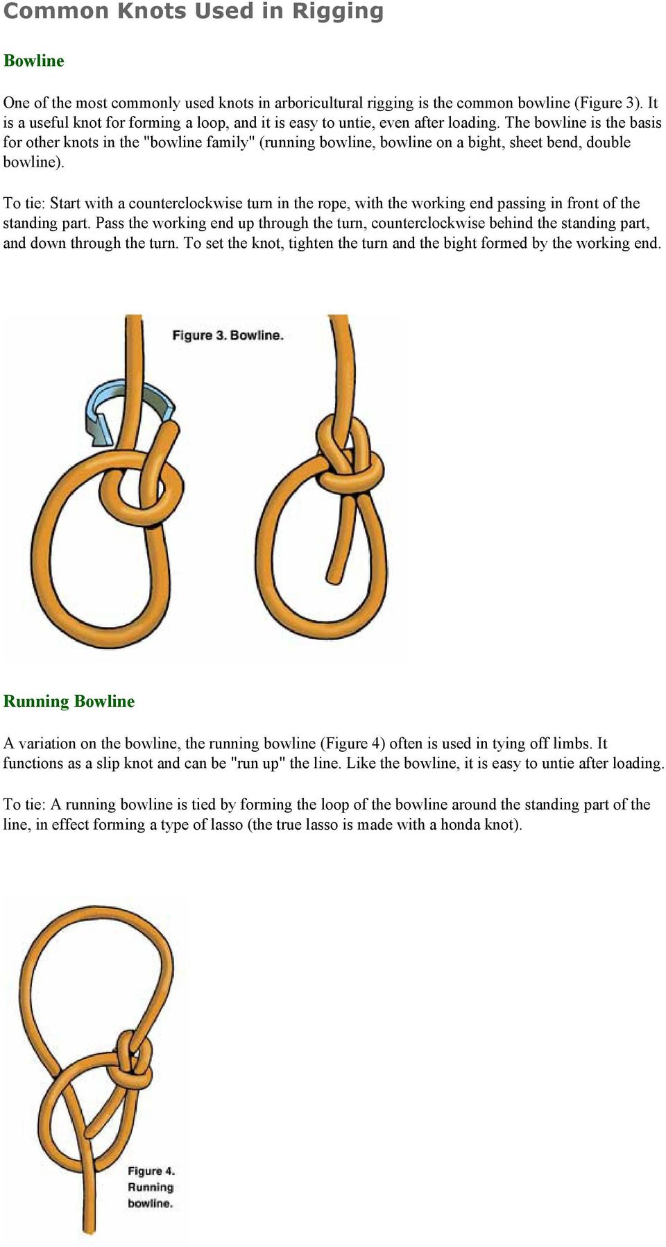 "The bowline is the basis for other knots in the ""bowline family"" (running bowline, bowline on a bight, sheet bend, double bowline)."