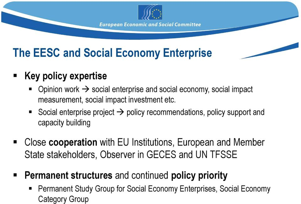 Social enterprise project policy recommendations, policy support and capacity building Close cooperation with EU