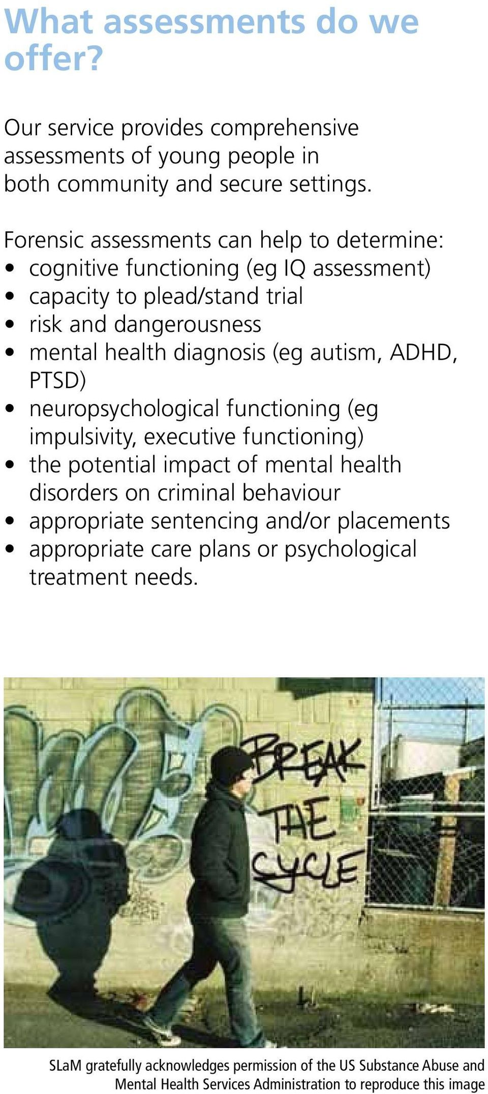 autism, ADHD, PTSD) neuropsychological functioning (eg impulsivity, executive functioning) the potential impact of mental health disorders on criminal behaviour