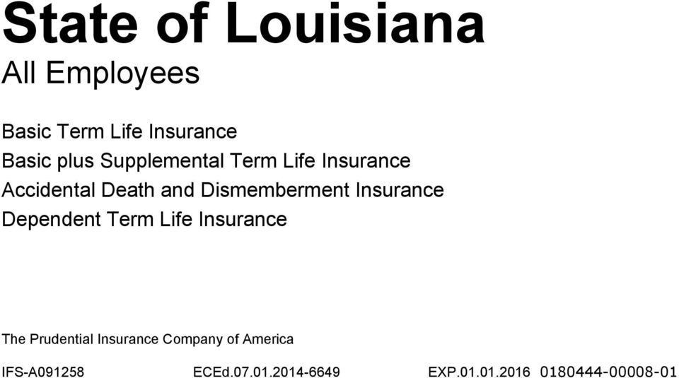 Insurance Dependent Term Life Insurance The Prudential Insurance