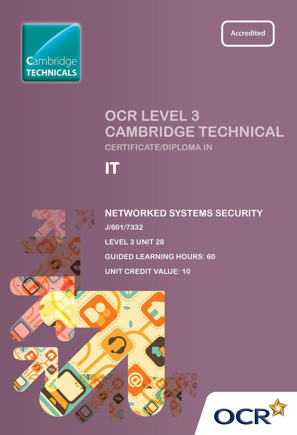 NETWORKED SYSTEMS SECURITY J/601/7332 LEVEL