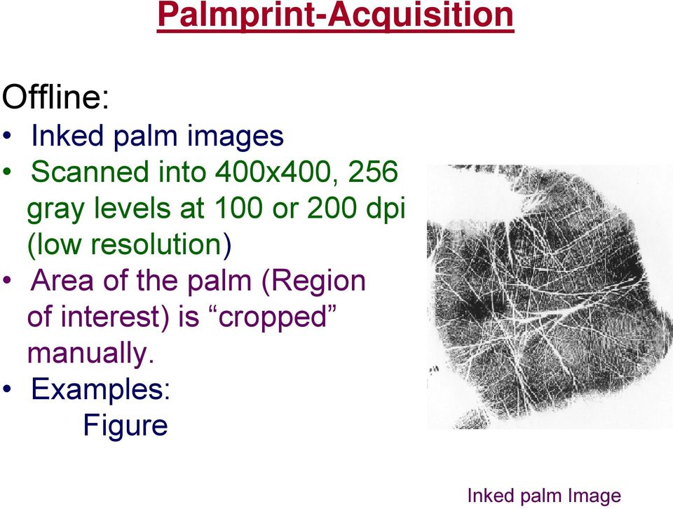 dpi (low resolution) Area of the palm (Region of