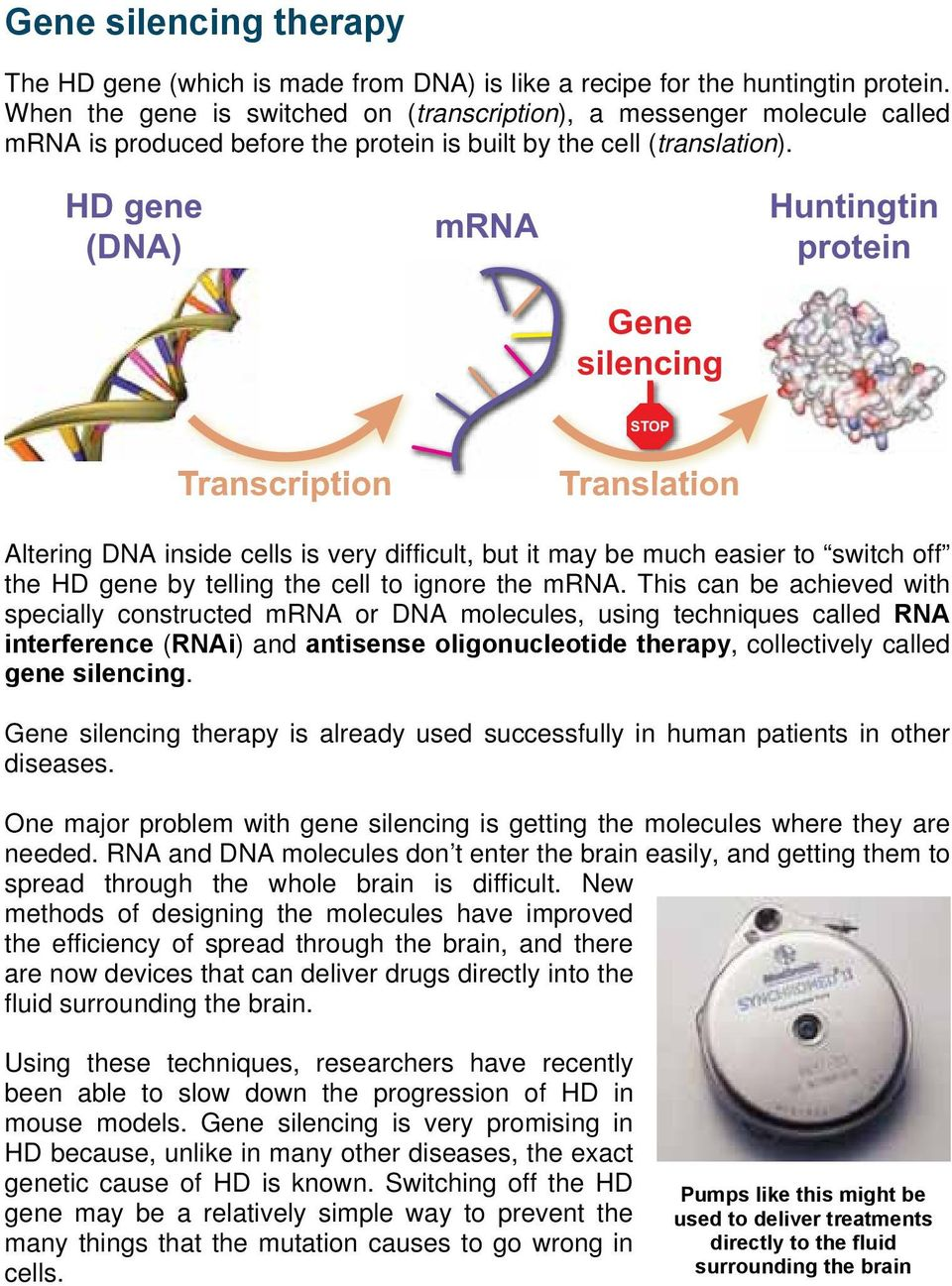 HD gene (DNA) mrna Huntingtin protein Gene silencing STOP Transcription Translation Altering DNA inside cells is very difficult, but it may be much easier to switch off the HD gene by telling the