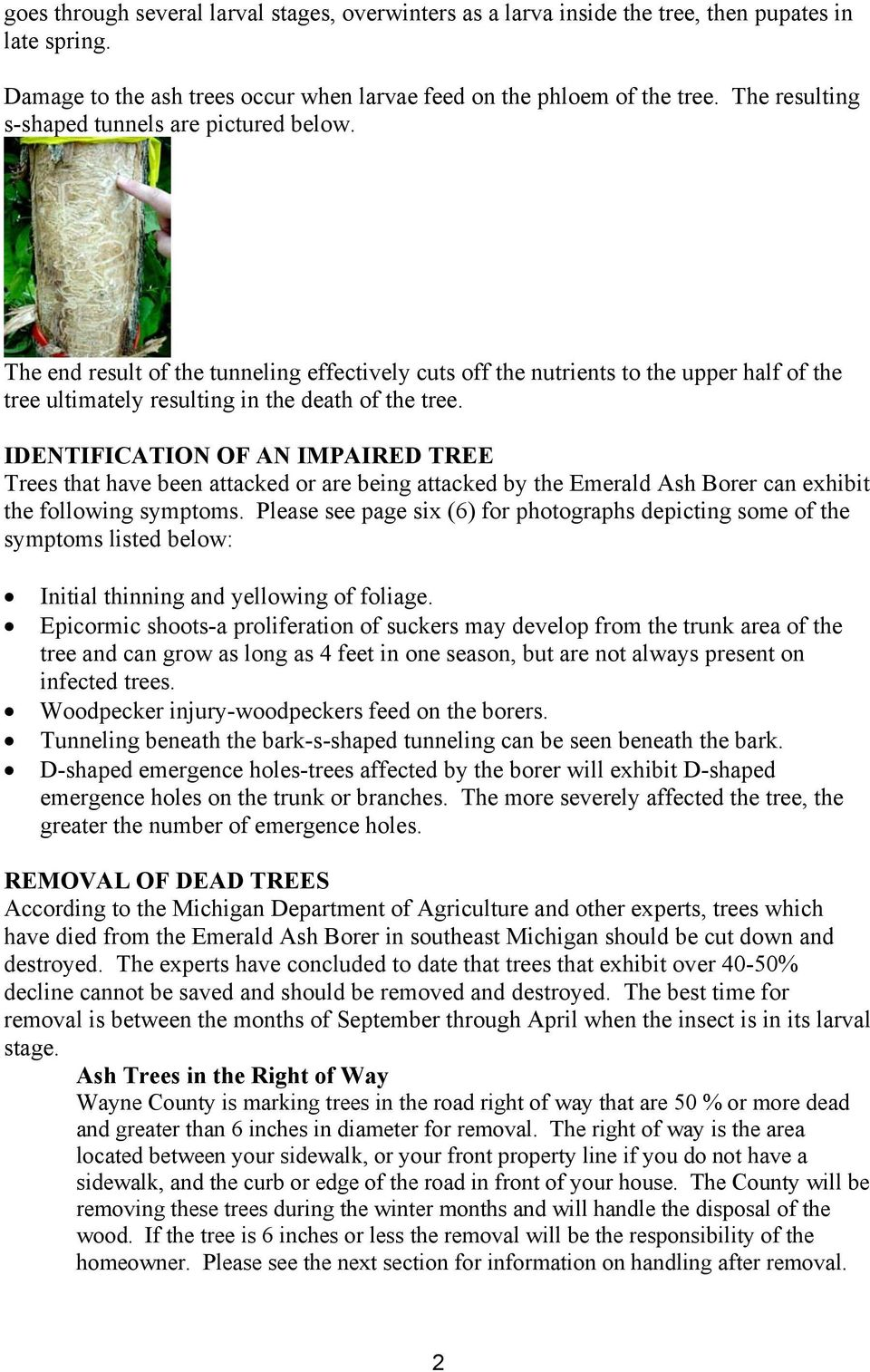 IDENTIFICATION OF AN IMPAIRED TREE Trees that have been attacked or are being attacked by the Emerald Ash Borer can exhibit the following symptoms.