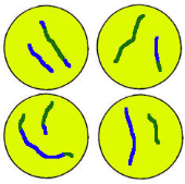 Meiosis II: NO REPLICATION OF CHROMOSOMES TAKES PLACE BEFORE MEIOSIS II!