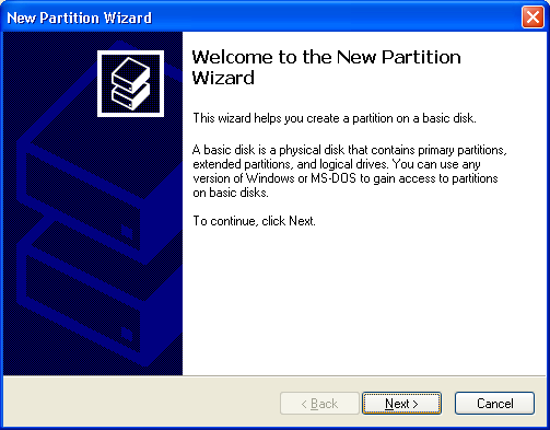 STEP 4: The New Partition Wizard is