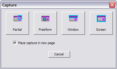 WorkSpace PC for New Users 6 1 From the main toolbar, click the Capture icon. The Capture window opens. 2 Select an area to capture. 3 Optionally, select Place capture in new page.
