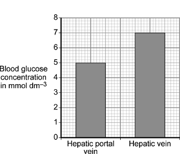 Graph 2 shows the concentration of glucose in the two blood vessels 6 hours after the meal.