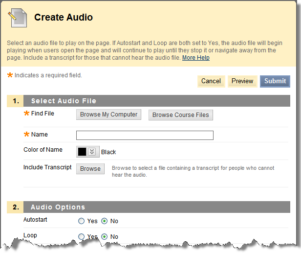 Clicking the Audio link opens the Create Audio page. This page is pictured below.