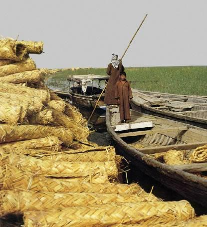 Marsh Arabs, So.