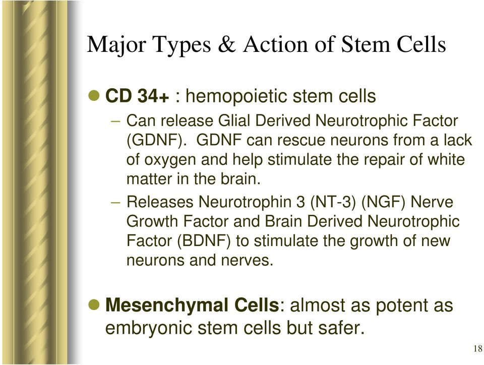 Releases Neurotrophin 3 (NT-3) (NGF) Nerve Growth Factor and Brain Derived Neurotrophic Factor (BDNF) to