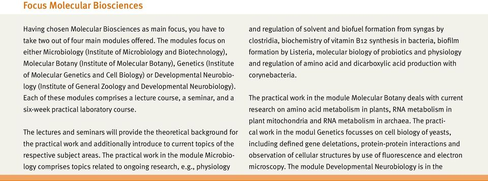 or Developmental Neurobiology (Institute of General Zoology and Developmental Neurobiology). Each of these modules comprises a lecture course, a seminar, and a six-week practical laboratory course.