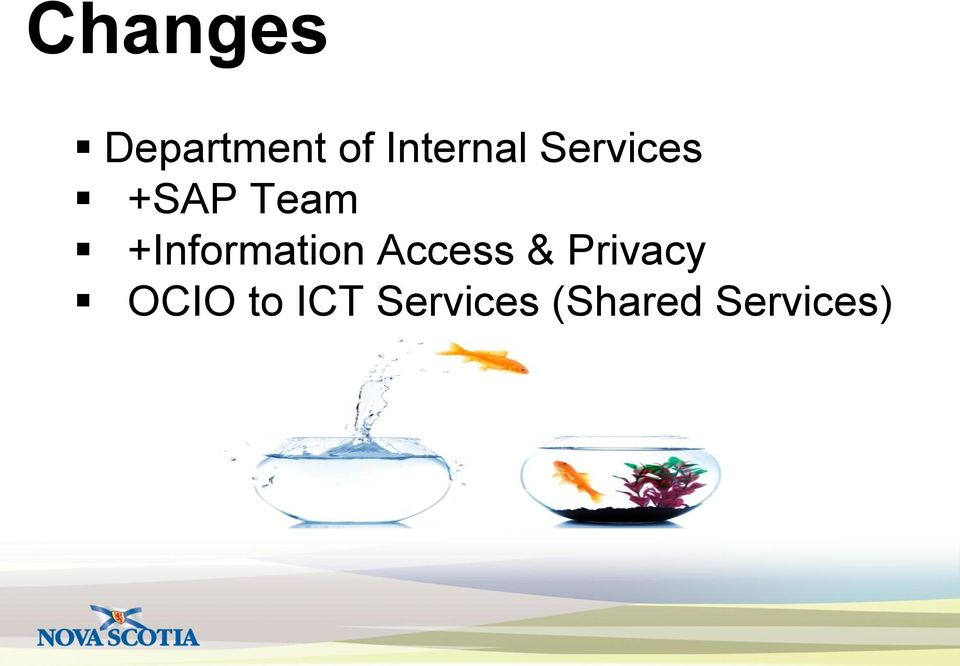 +Information Access & Privacy