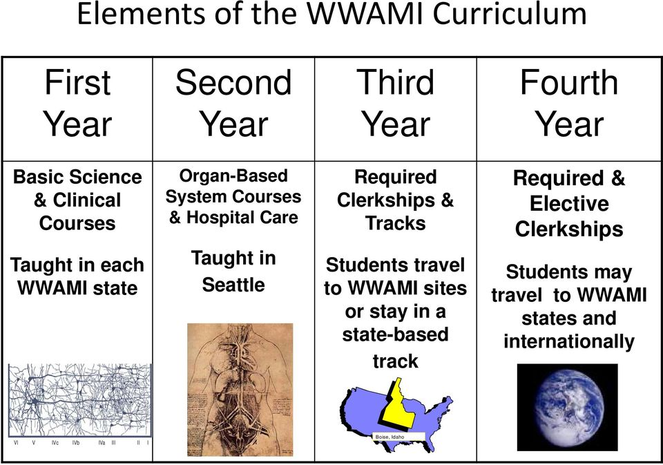 Clerkships Taught in each WWAMI state Taught in Seattle Students travel to WWAMI sites or stay in a
