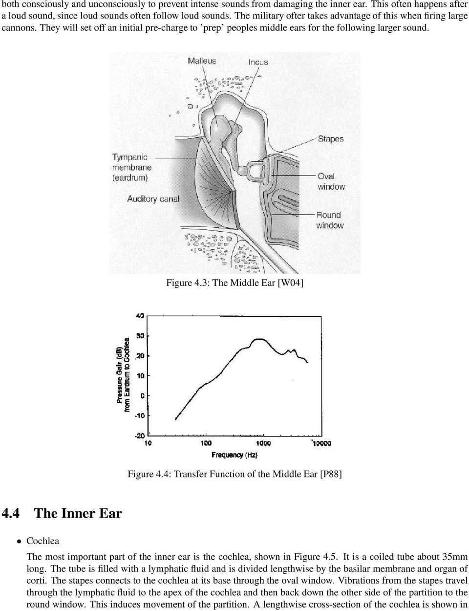 3: The Middle Ear [W04] Figure 4.4: Transfer Function of the Middle Ear [P88] 4.4 The Inner Ear Cochlea The most important part of the inner ear is the cochlea, shown in Figure 4.5.