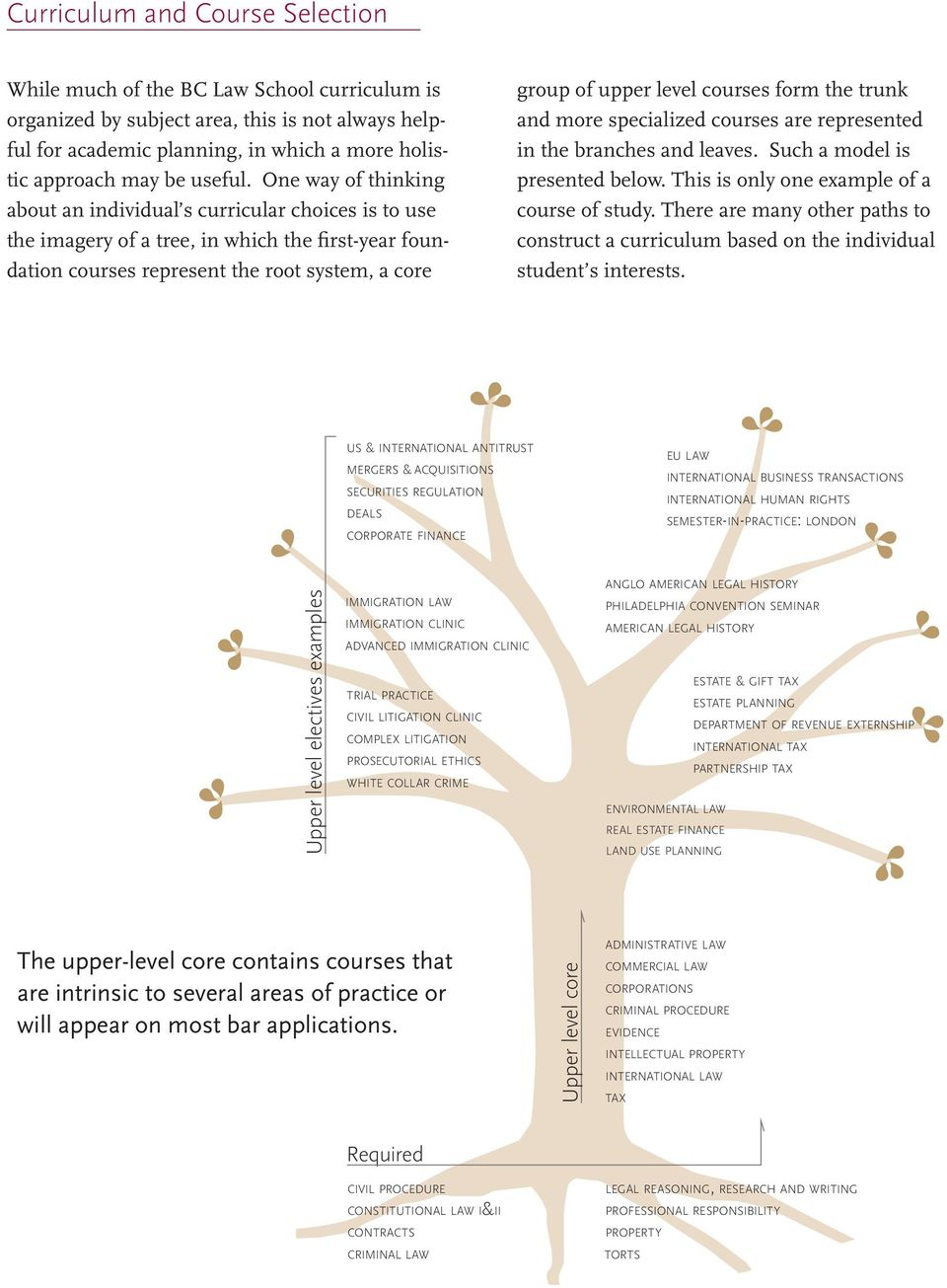 One way of thinking about an individual s curricular choices is to use the imagery of a tree, in which the first-year foundation courses represent the root system, a core group of upper level courses