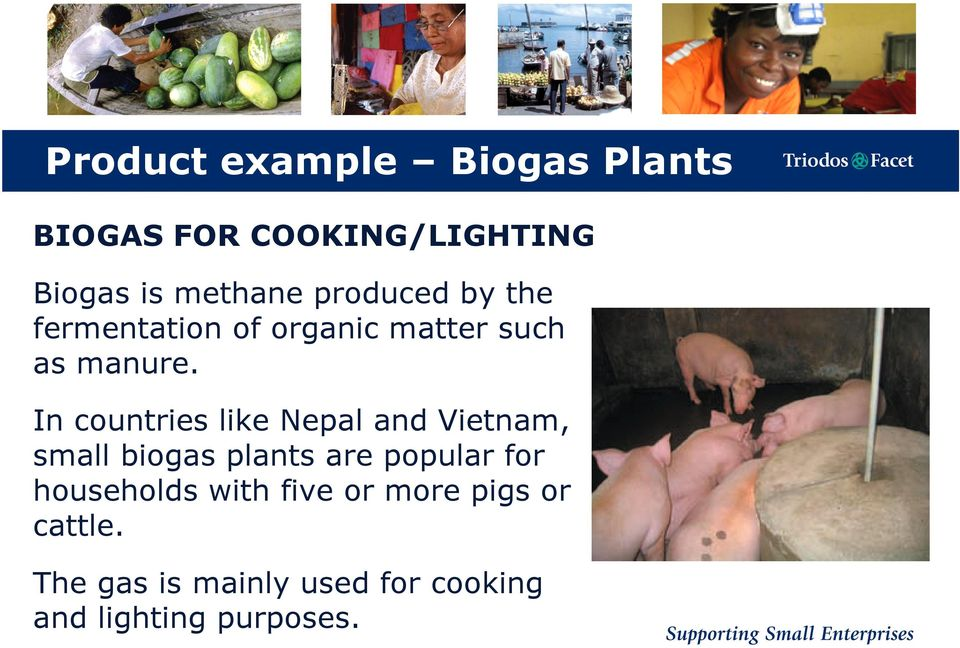 In countries like Nepal and Vietnam, small biogas plants are popular for