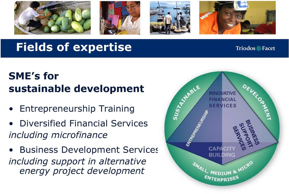 Services including microfinance Business Development