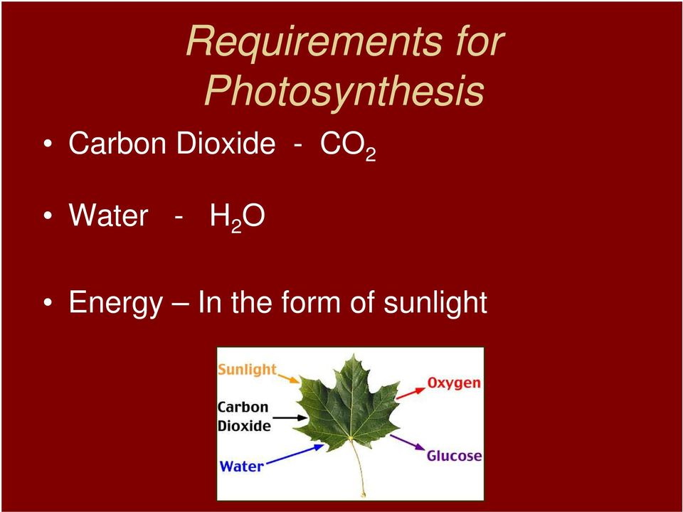 Dioxide - CO 2 Water - H
