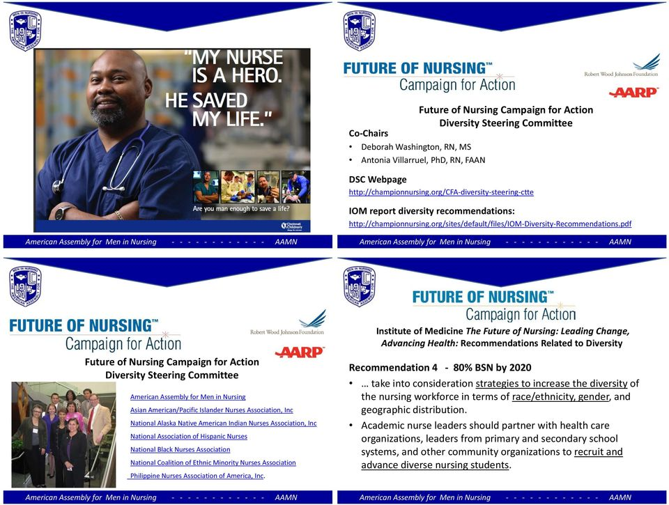 pdf Future of Nursing Campaign for Action Diversity Steering Committee American Assembly for Men in Nursing Asian American/Pacific Islander Nurses Association, Inc National Alaska Native American