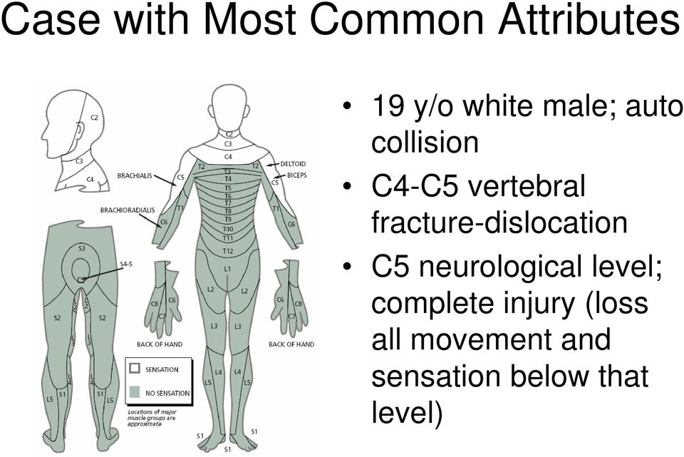 fracture-dislocation C5 neurological level;