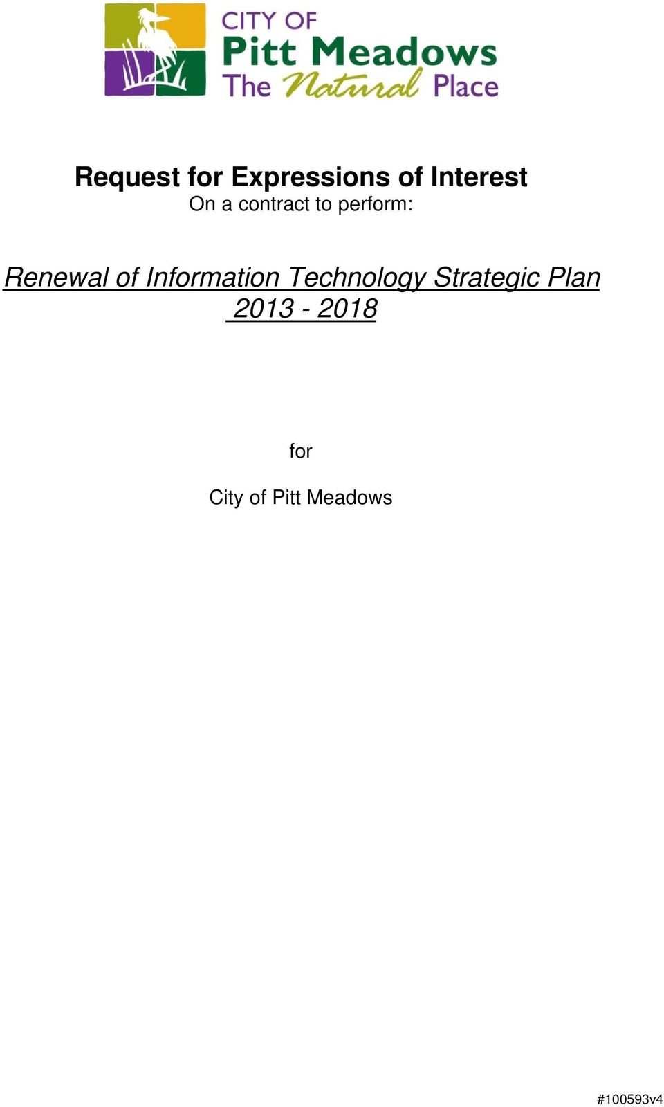 Information Technology Strategic