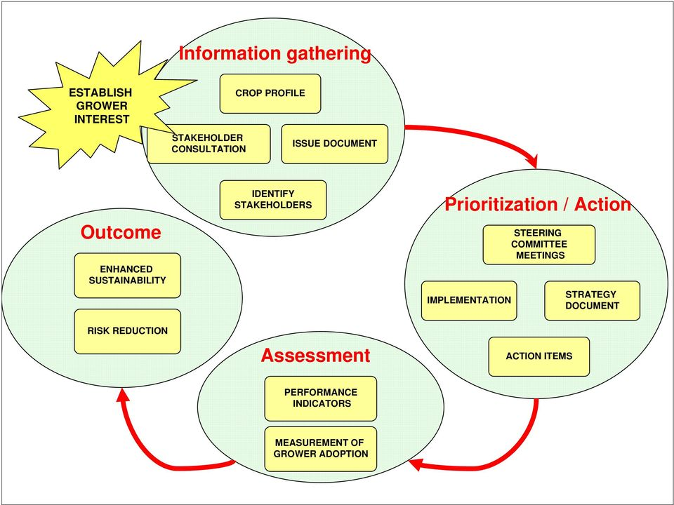 Prioritization / Action IMPLEMENTATION STEERING COMMITTEE MEETINGS STRATEGY