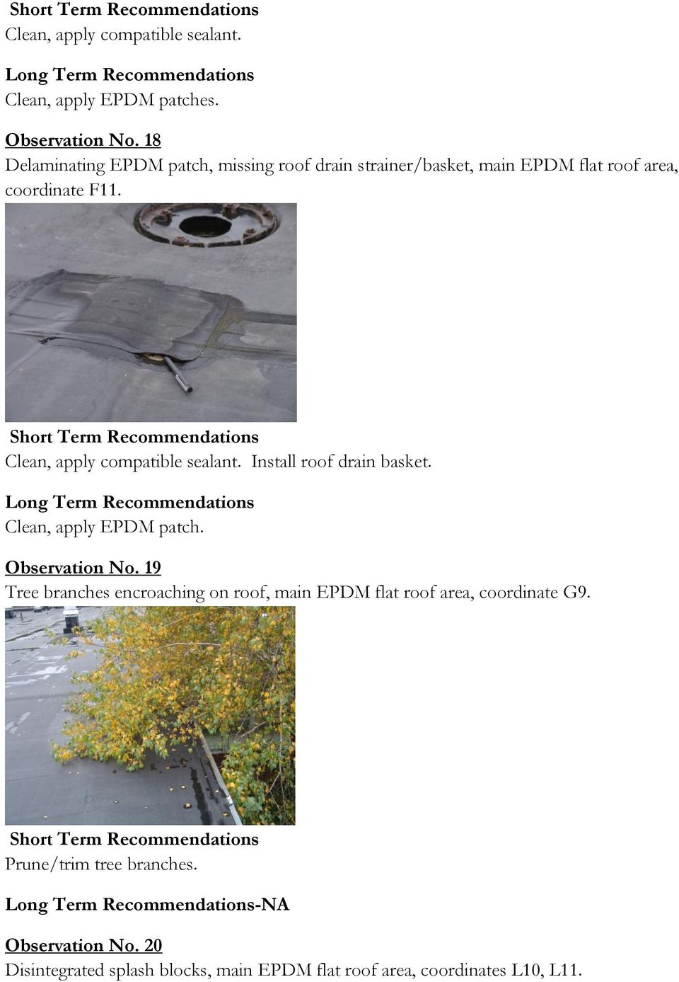 Clean, apply compatible sealant. Install roof drain basket. Clean, apply EPDM patch. Observation No.