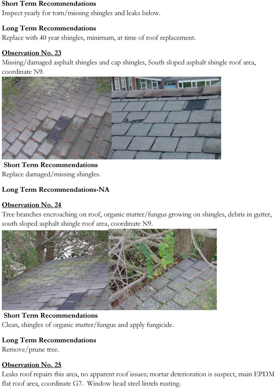 24 Tree branches encroaching on roof, organic matter/fungus growing on shingles, debris in gutter, south sloped asphalt shingle roof area, coordinate N9.