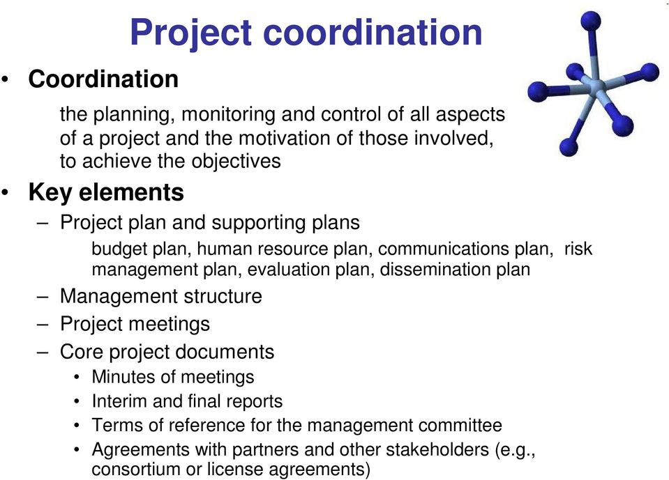 plan, evaluation plan, dissemination plan Management structure Project meetings Core project documents Minutes of meetings Interim and final
