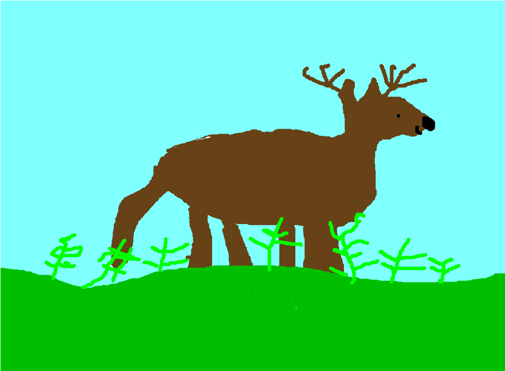 Amazing Deer By Lance My amazing animal is the deer. It lives grasslands and forests in North and South America. It is an herbivore and it eats grasses, flowers, twigs, leaves, mushrooms, and nuts.
