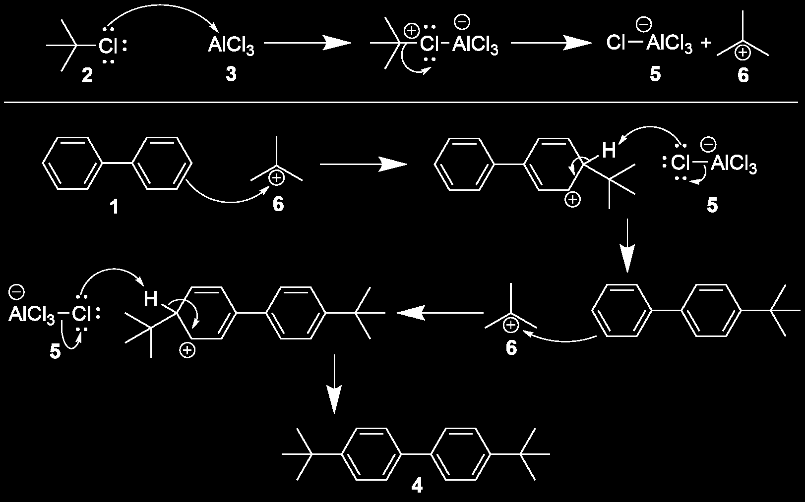 the substituents are added on both sides of the biphenyl reactant, while the aluminum and dichloromethane serve to facilitate the reaction.