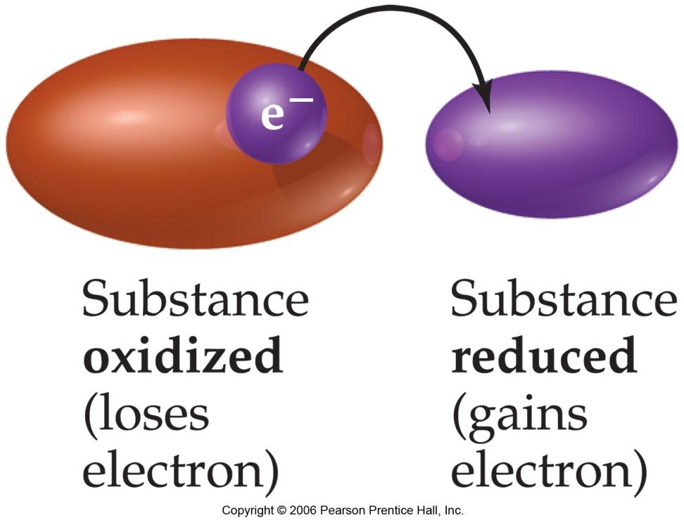 Oxidation - reduction Oxidation is loss of electrons Reduction is gain of electrons Oxidation is always accompanied by reduction The total