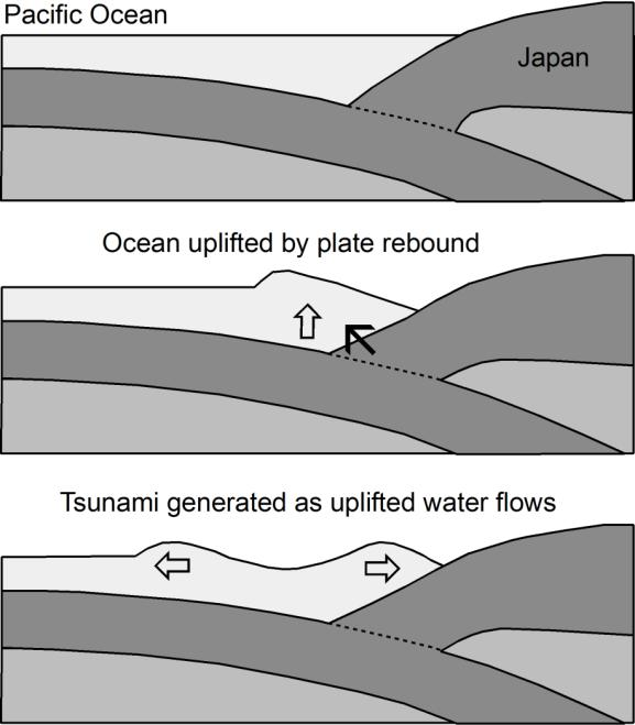 The two oceanic plates are both moving in a generally westward direction at a rate of a few centimetres per year. The zones at which the plates collide lie on the seabed to the east of Japan (Fig.