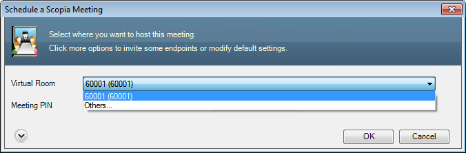 Scheduling a Videoconference Using the Scopia Add-in for Microsoft Outlook Figure 9: Advanced meeting settings 2.