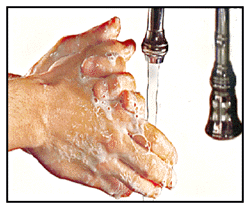 Hand Washing Wash hands before: Eating. Wash hands after: Any contact with blood, body fluids or soiled objects. Using the toilet.