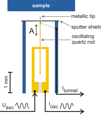 Technical Design Figure 2: Schematic drawing of the quartz KolibriSensor TM. The sensor oscillates with amplitude A perpendicular to the sample surface.