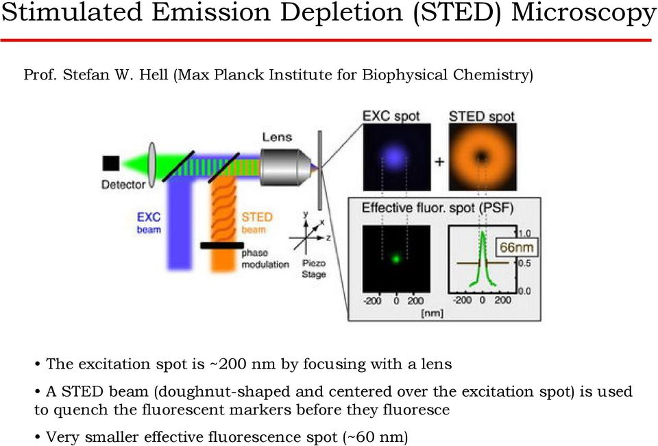 focusing with a lens A STED beam (doughnut-shaped and centered over the excitation spot)