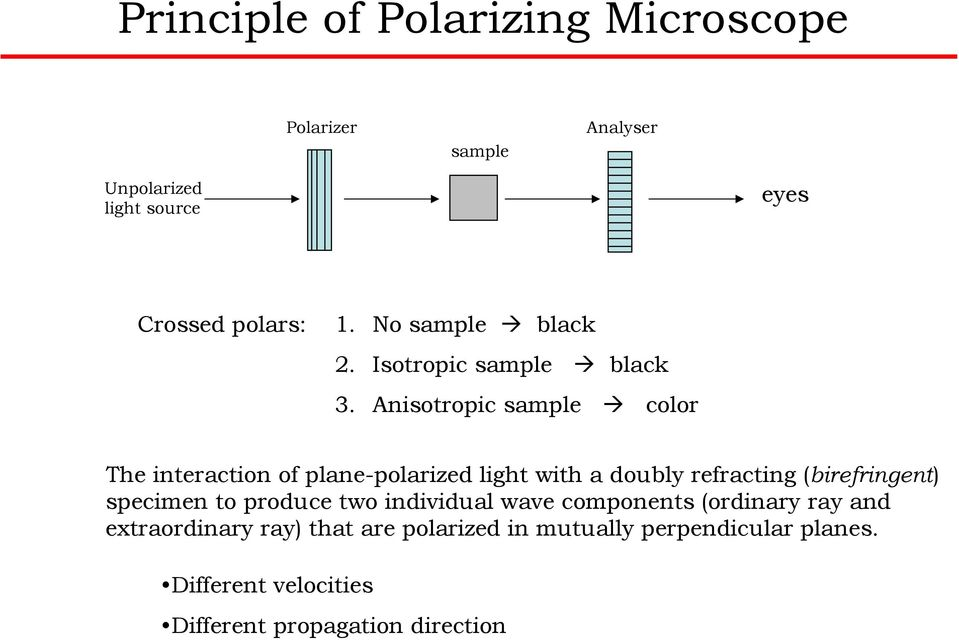 Anisotropic sample color The interaction of plane-polarized light with a doubly refracting (birefringent)