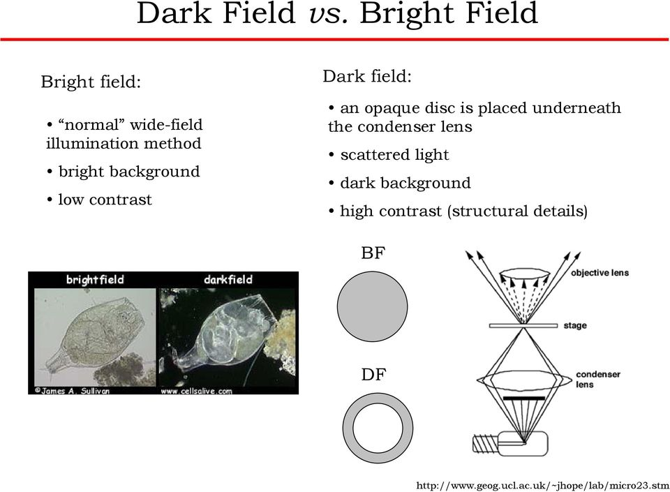 background low contrast Dark field: an opaque disc is placed underneath