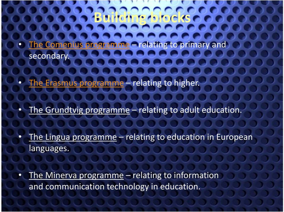 The Grundtvig programme relating to adult education.