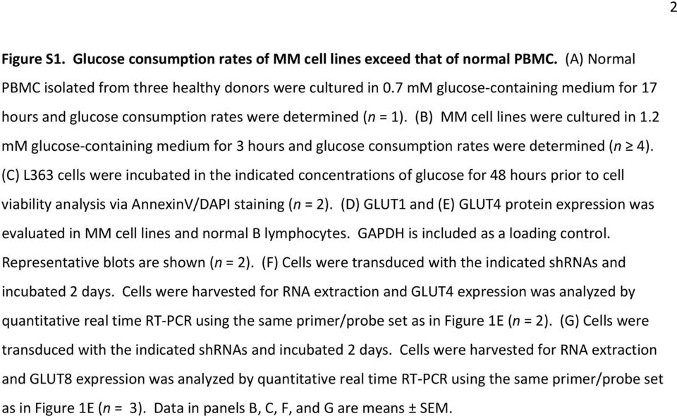 2 mm glucose containing medium for 3 hours and glucose consumption rates were determined (n 4).