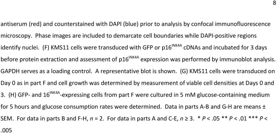 (F) KMS11 cells were transduced with GFP or p16 INK4A cdnas and incubated for 3 days before protein extraction and assessment of p16 INK4A expression was performed by immunoblot analysis.
