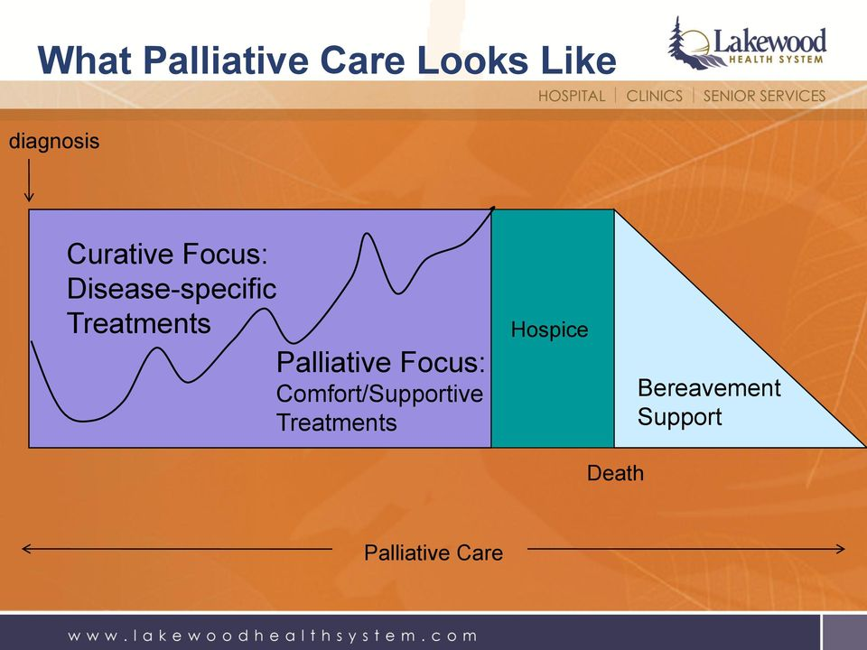 Palliative Focus: Comfort/Supportive