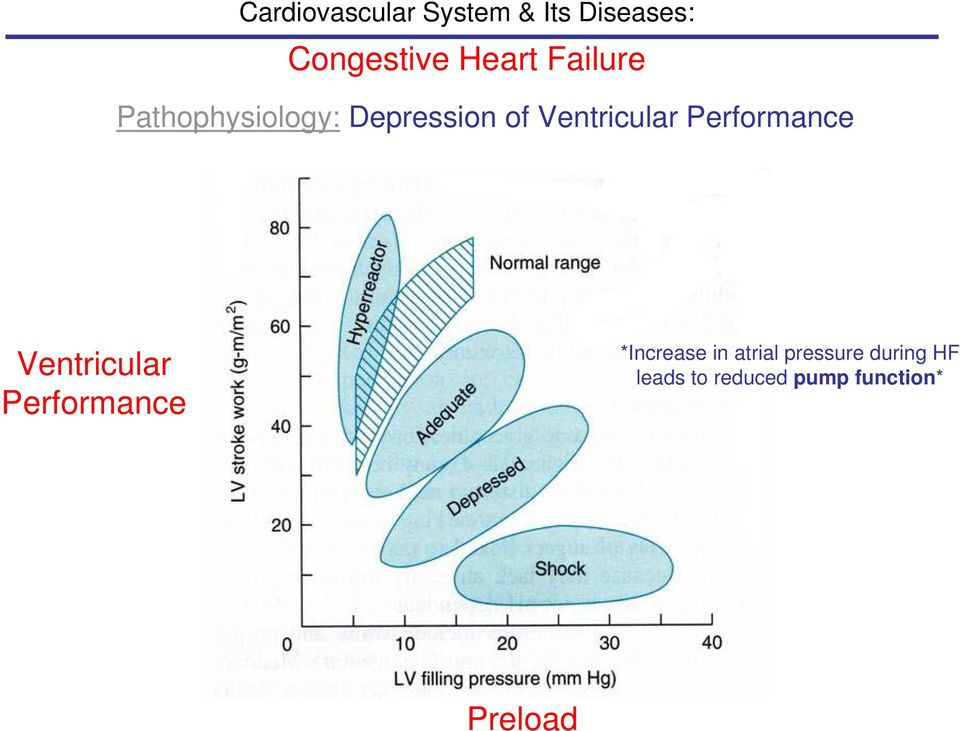 Performance *Increase in atrial