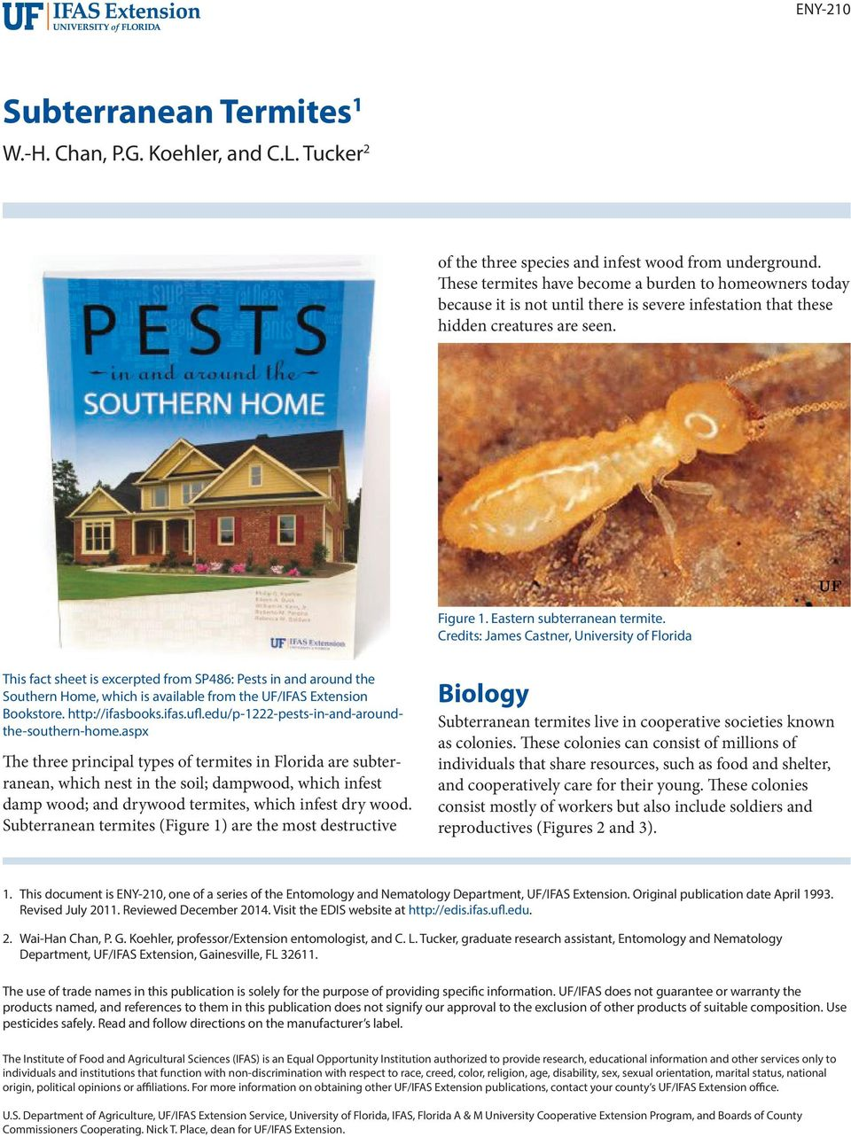 Credits: James Castner, University of Florida This fact sheet is excerpted from SP486: Pests in and around the Southern Home, which is available from the UF/IFAS Extension Bookstore. http://ifasbooks.
