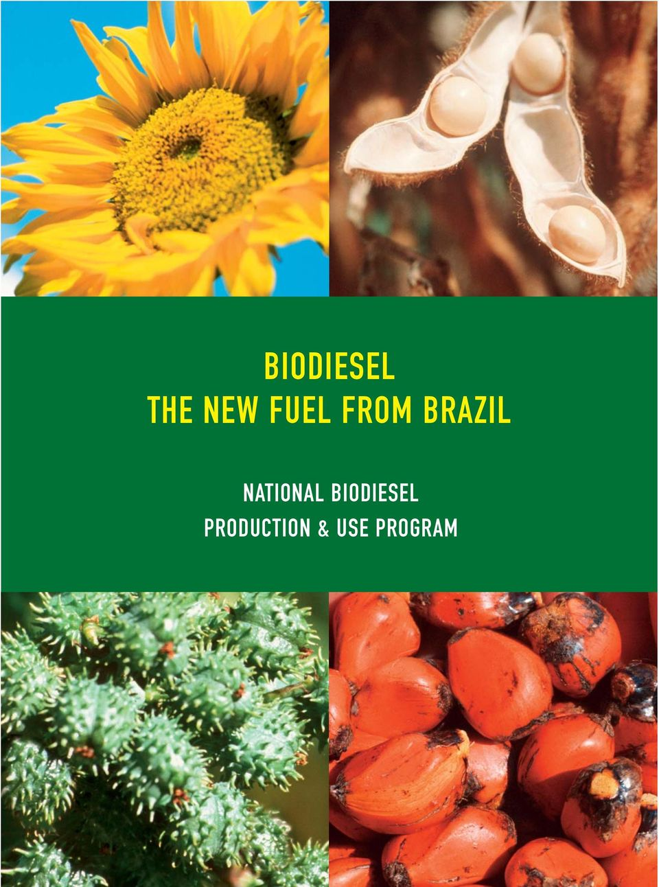 NATIONAL BIODIESEL