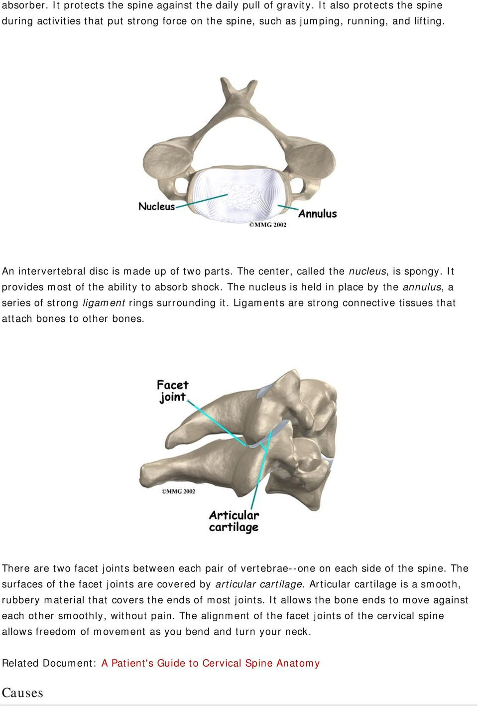 The nucleus is held in place by the annulus, a series of strong ligament rings surrounding it. Ligaments are strong connective tissues that attach bones to other bones.