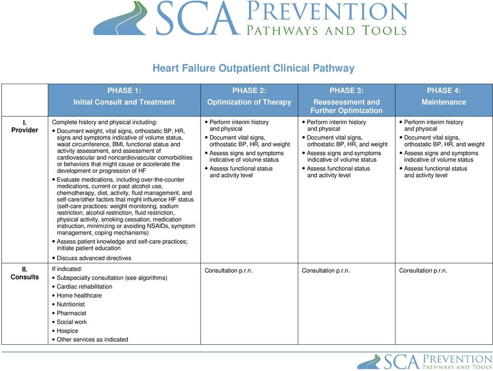 activity assessment, and assessment of cardiovascular and noncardiovascular comorbidities or behaviors that might cause or accelerate the development or progression of HF Evaluate medications,