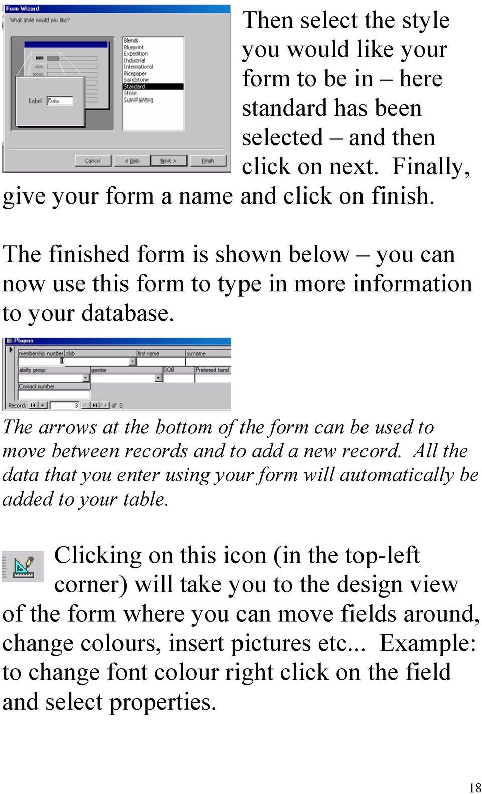 The arrows at the bottom of the form can be used to move between records and to add a new record.